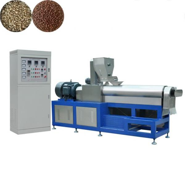 Best Quality Different Capacity Floating Fish Food Pellet Processing Making Extruder Price Floating Fish Feed Machine #1 image