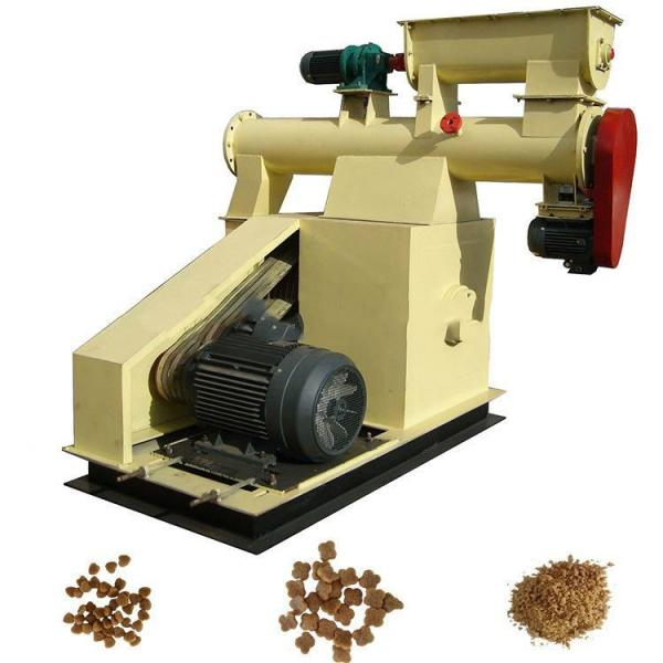 Hot Sale Fish Feed Pellet Making Machine with Factory Price #1 image